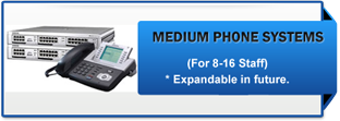 medium business phone system